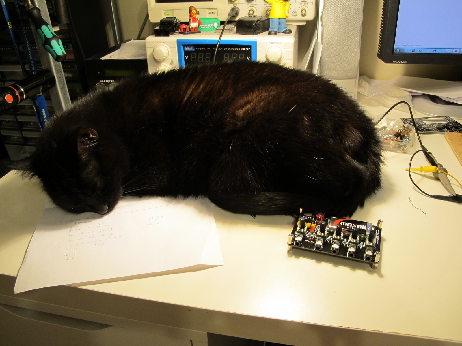 Photo shot of my cat sleeping on workbench